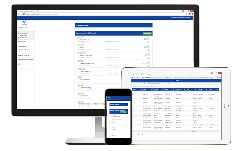 customer-portal-monitors-expense-user