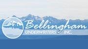 SAP Success from Bellingham Underwriters